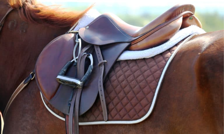 6 Easy Steps to Saddle a Horse