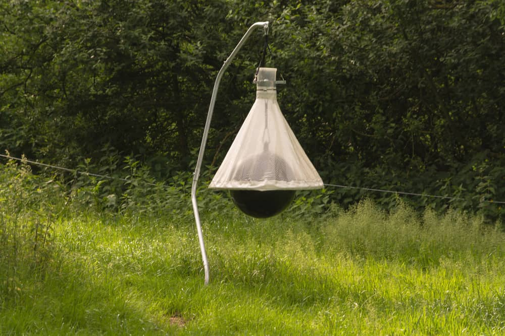 Chemicals Horse Fly lamp