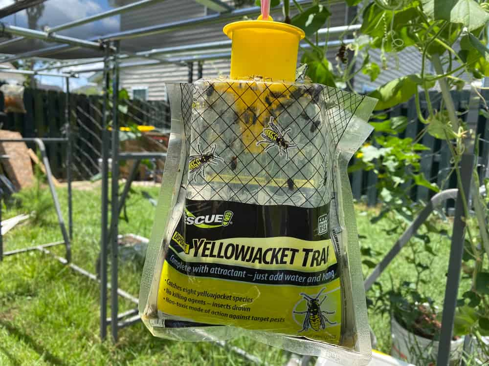 Commercial Mechanical Horse Fly Traps