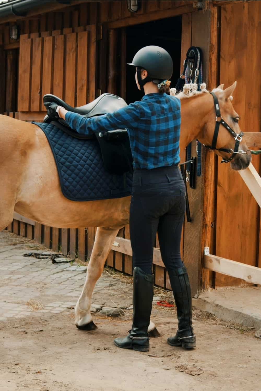 Placing the Saddle