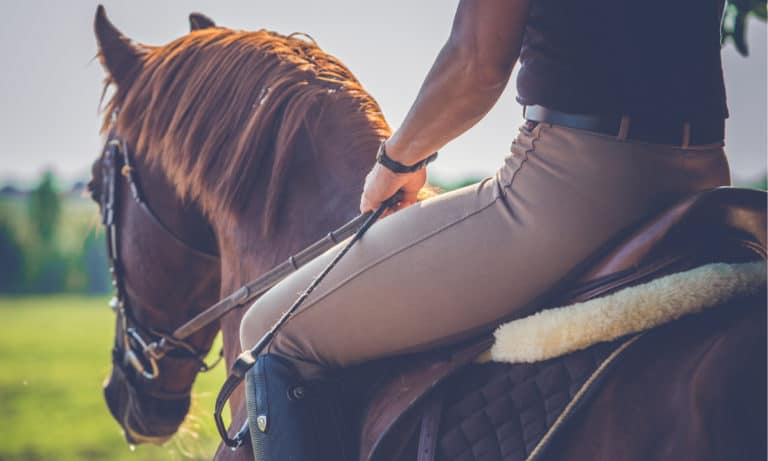 6 Easy Steps to Post On A Horse