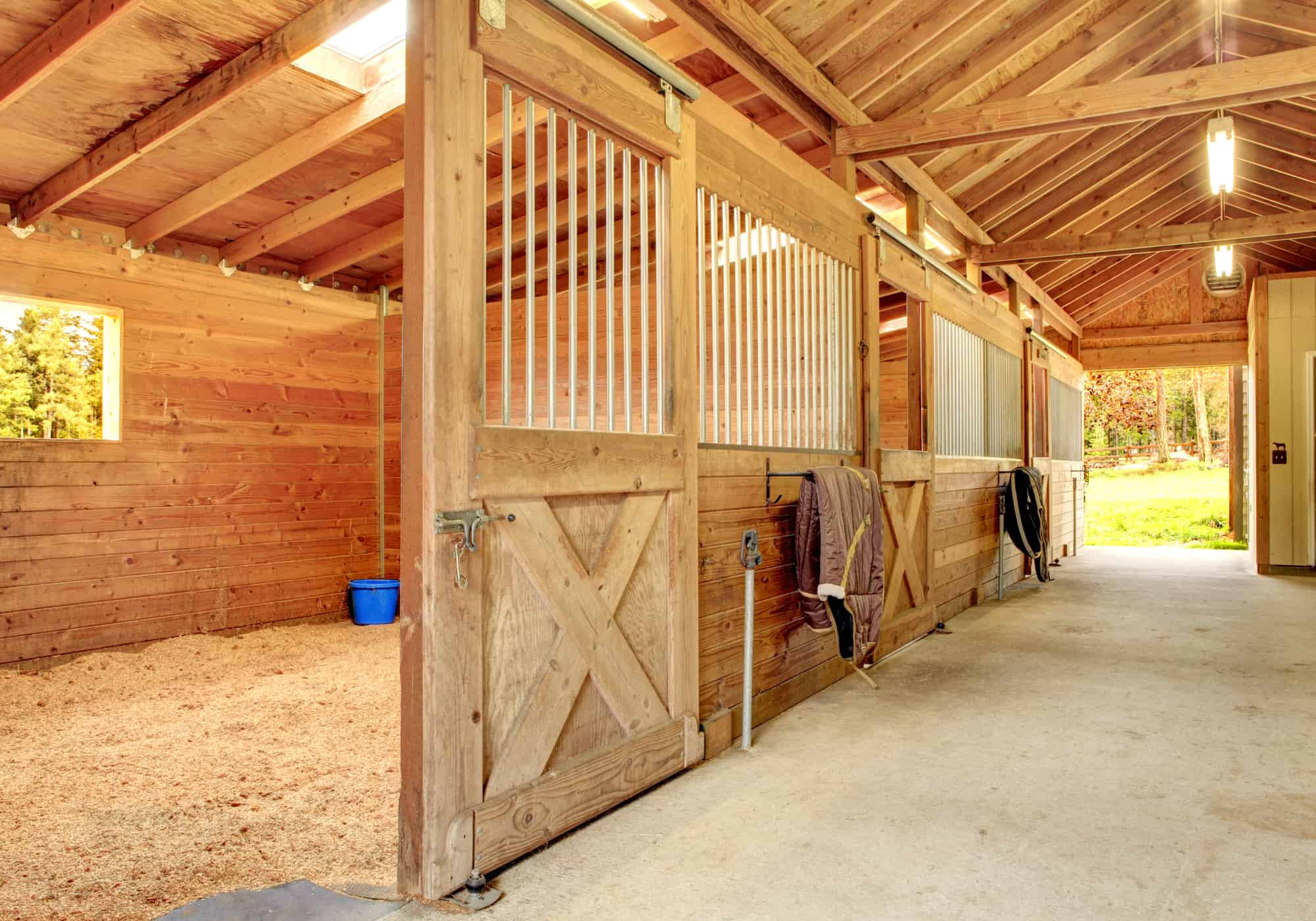 8 Easy Steps to Clean a Horse Stall
