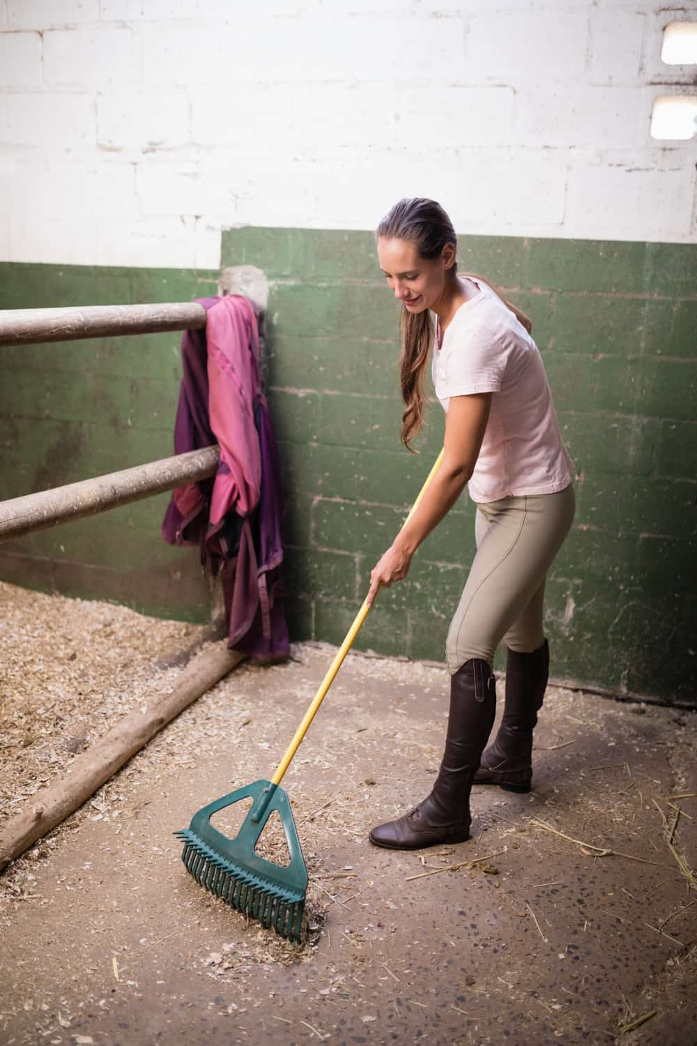 Clean the Stable