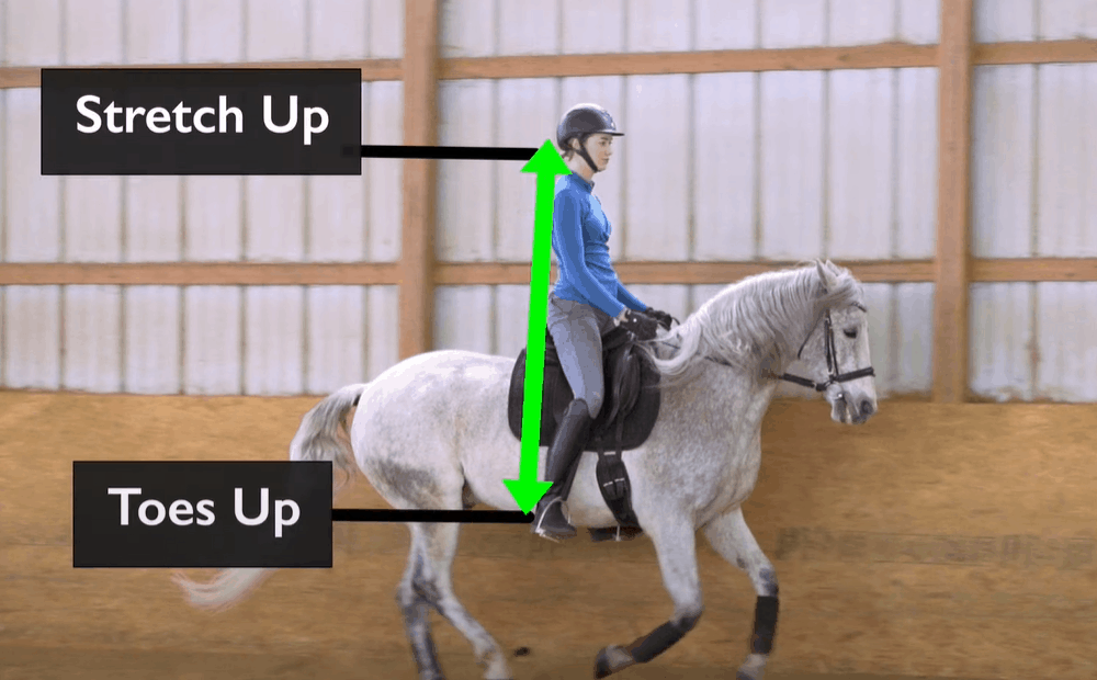 Get Into a Cantering Position