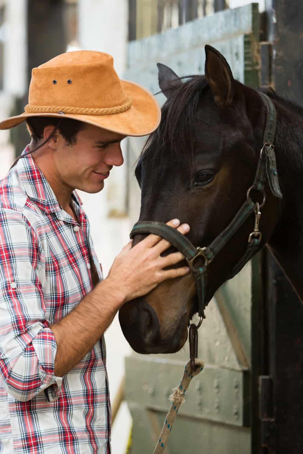 Horse breeders and trainers