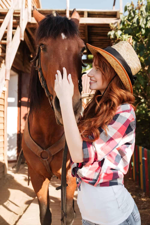 How Do Horse Whisperers Build Trust