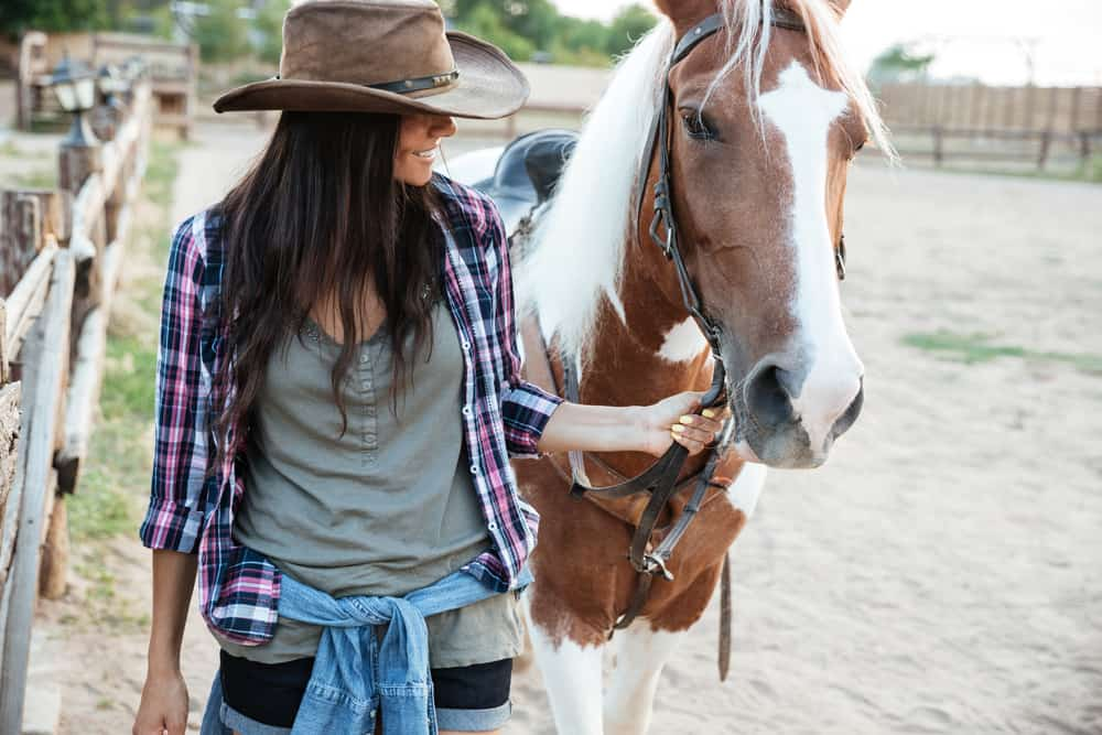 How to Become a Horse Whisperer