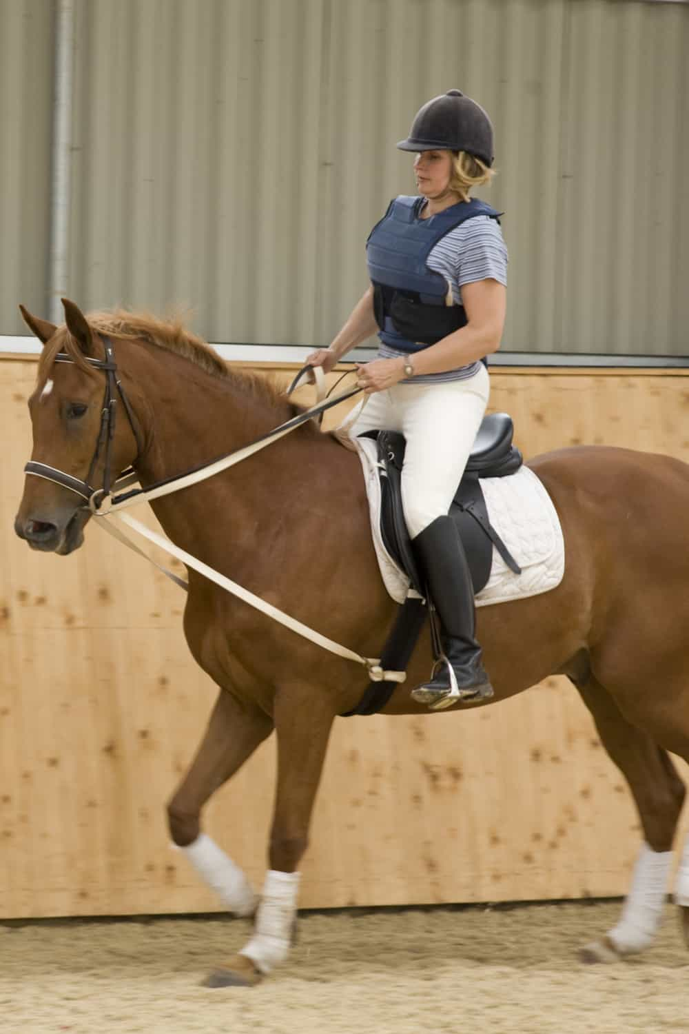 Mistakes to Avoid When Cantering on a Horse