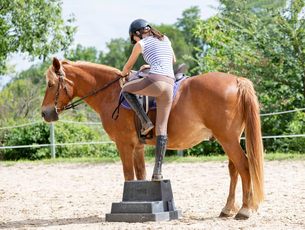 Place Your Leg In the Stirrup