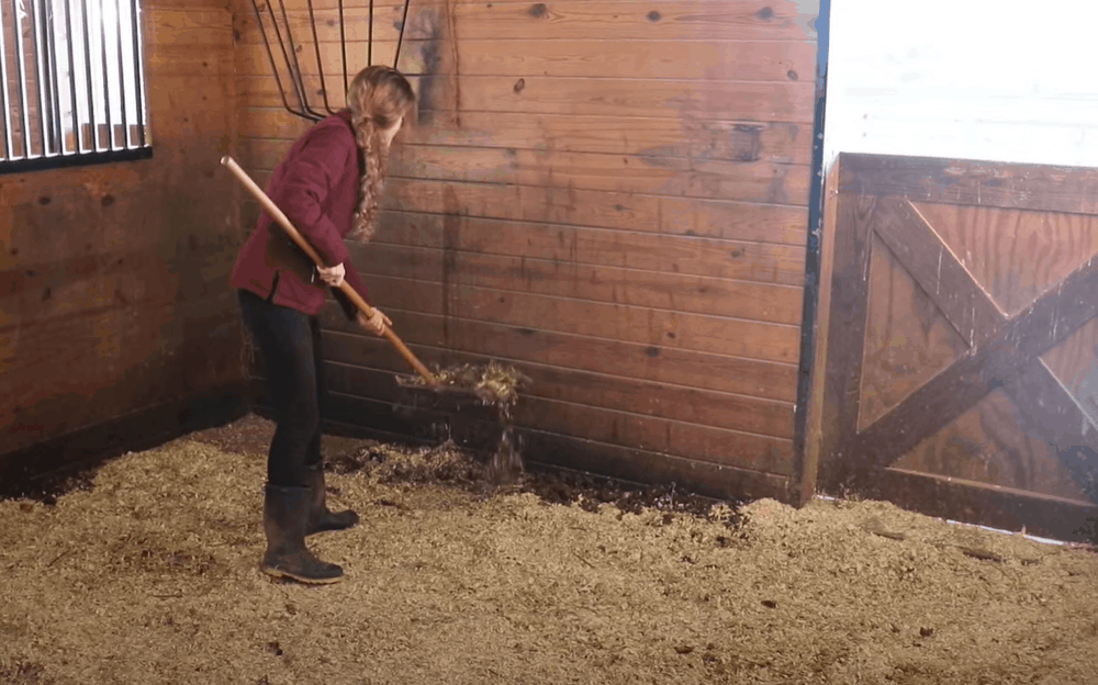 Start with the manure