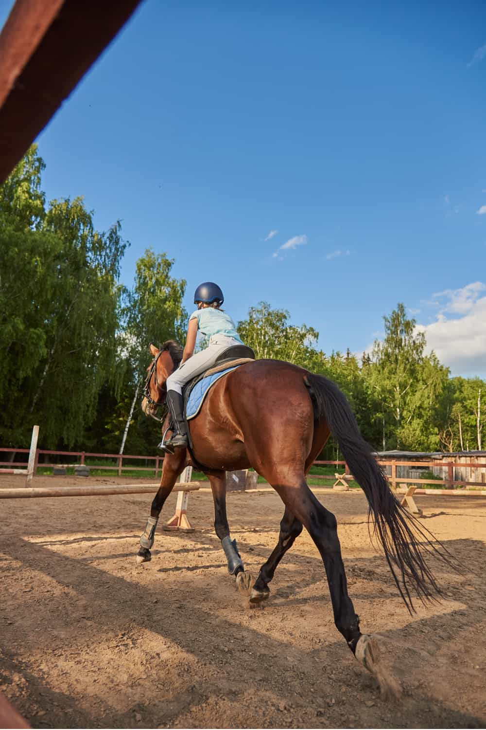 What is Cantering in Horse Riding