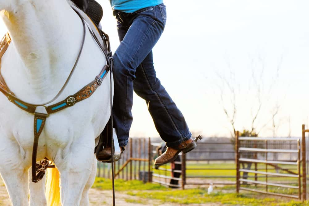 Why You Should Learn to Get On a Horse From Both Sides